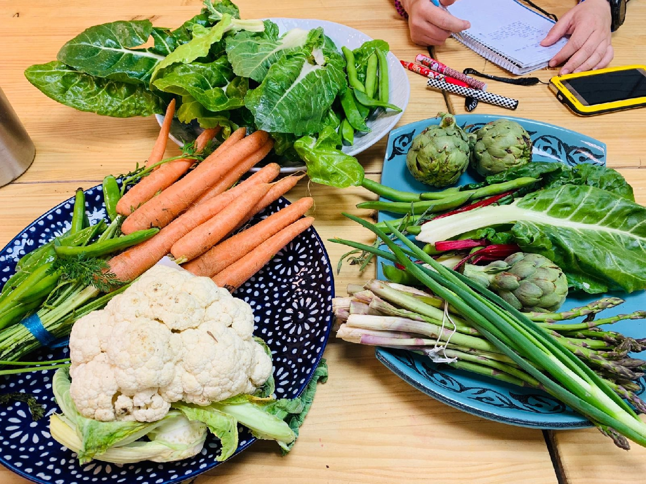 Curso de cocina de verduras y hortalizas