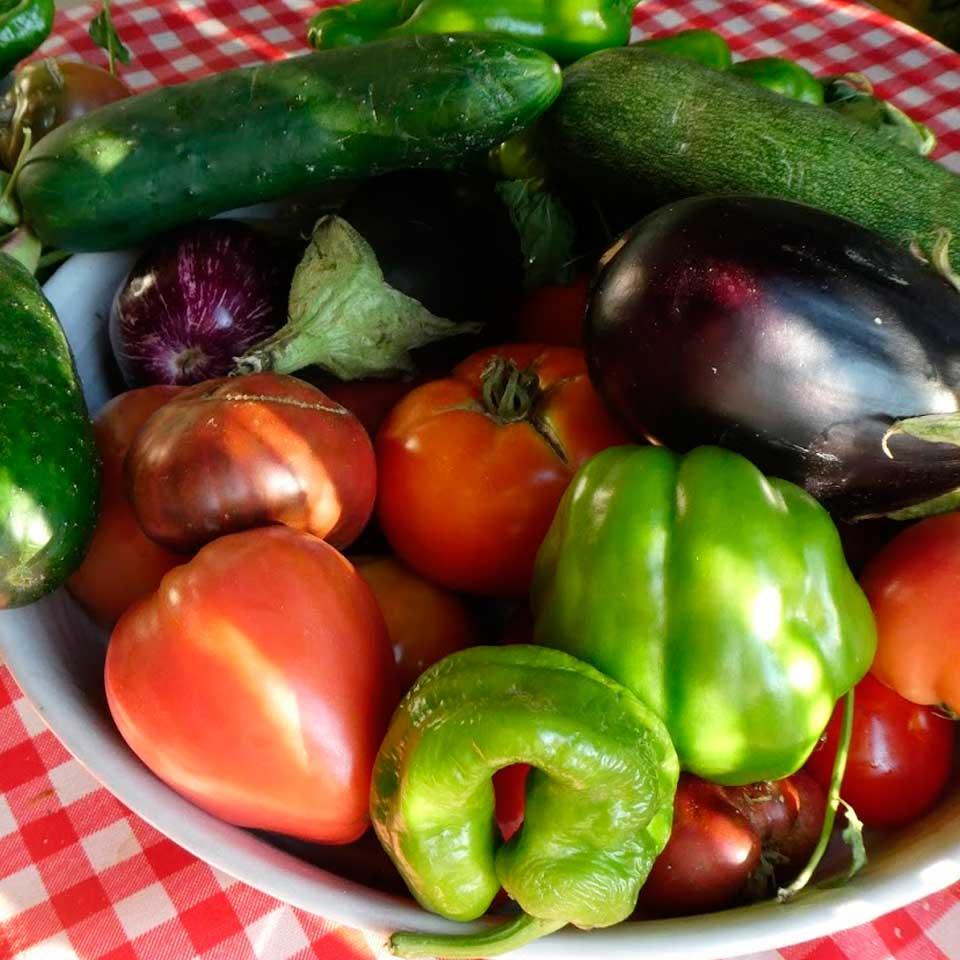 Taller de cocina: verduras de verano