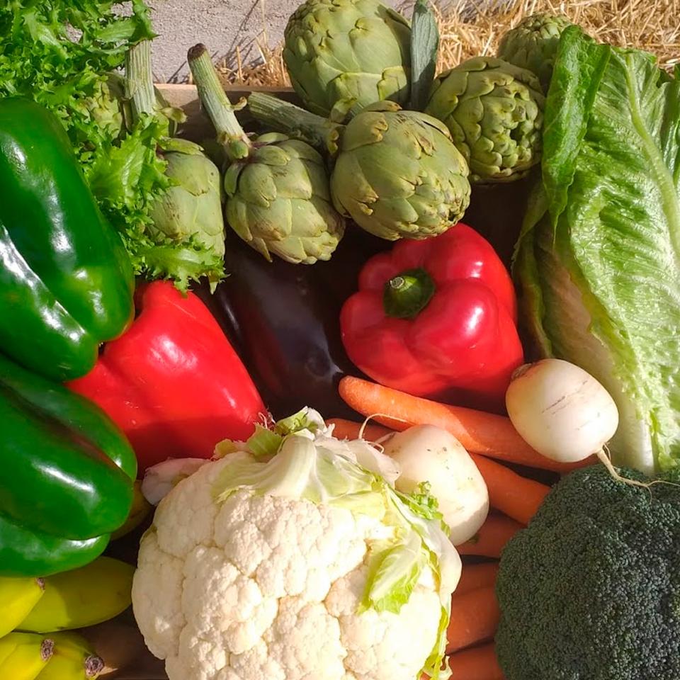 Verduras Cortes y ensaladas (1) - Cocina inicial - I